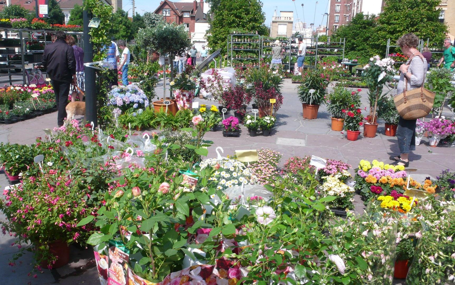 March aux fleurs et jardins les march s de l on for Jardin aux fleurs